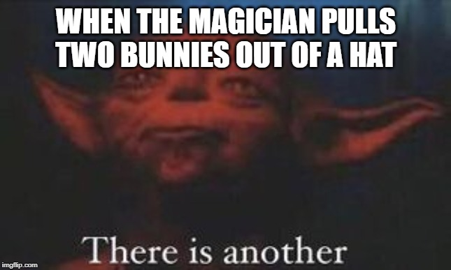 yoda there is another | WHEN THE MAGICIAN PULLS TWO BUNNIES OUT OF A HAT | image tagged in yoda there is another | made w/ Imgflip meme maker
