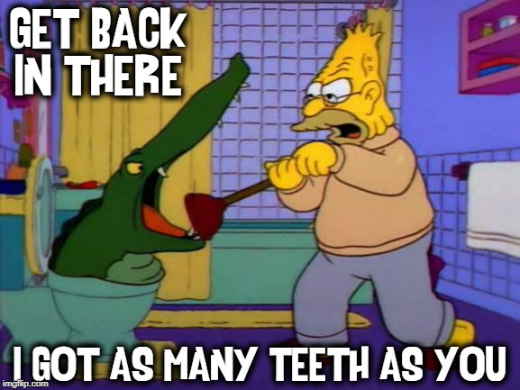 That Durn Stopped Up Toilet! | GET BACK IN THERE I GOT AS MANY TEETH AS YOU | image tagged in vince vance,the simpsons,toilet humor,plunger,alligator,grandpa | made w/ Imgflip meme maker