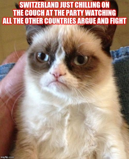 Grumpy Cat Meme | SWITZERLAND JUST CHILLING ON THE COUCH AT THE PARTY WATCHING ALL THE OTHER COUNTRIES ARGUE AND FIGHT | image tagged in memes,grumpy cat | made w/ Imgflip meme maker