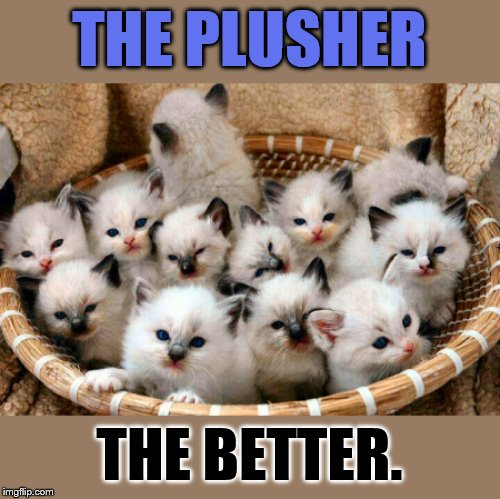 THE PLUSHER THE BETTER. | made w/ Imgflip meme maker
