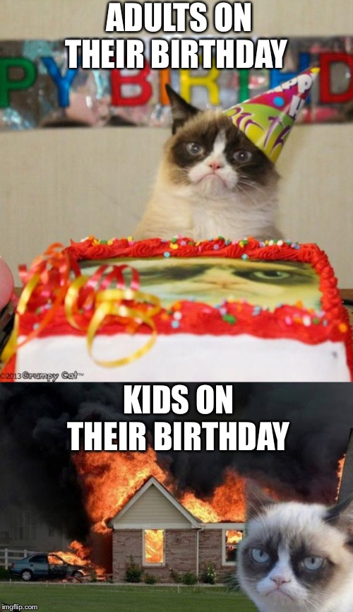 ADULTS ON THEIR BIRTHDAY; KIDS ON THEIR BIRTHDAY | image tagged in memes,burn kitty,grumpy cat birthday | made w/ Imgflip meme maker