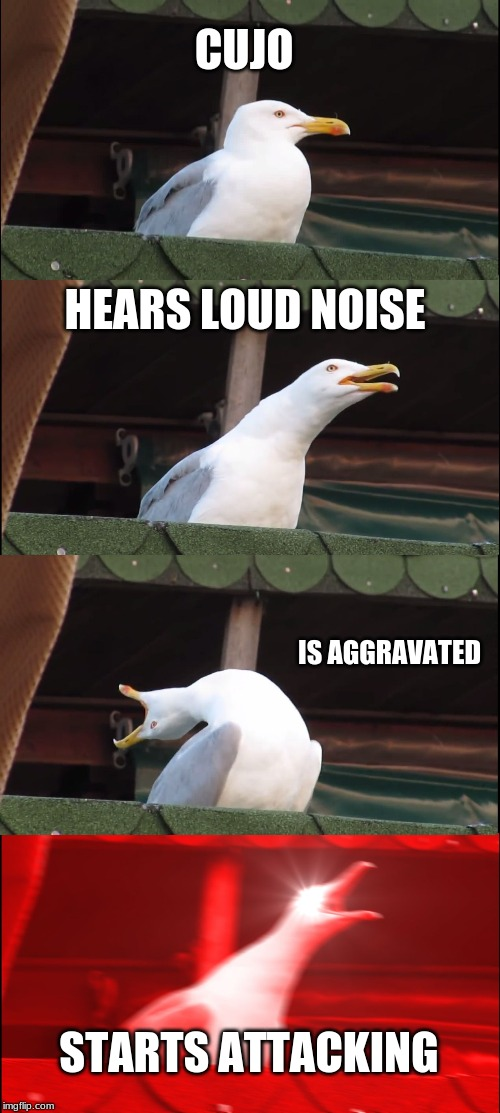 Inhaling Seagull | CUJO HEARS LOUD NOISE IS AGGRAVATED STARTS ATTACKING | image tagged in memes,inhaling seagull | made w/ Imgflip meme maker