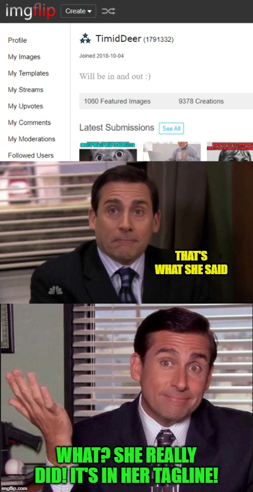Just a joke! Really, it is...love ya TD :) |  THAT'S WHAT SHE SAID; WHAT? SHE REALLY DID! IT'S IN HER TAGLINE! | image tagged in thats what she said,michael scott,just a joke,boma,timiddeer | made w/ Imgflip meme maker