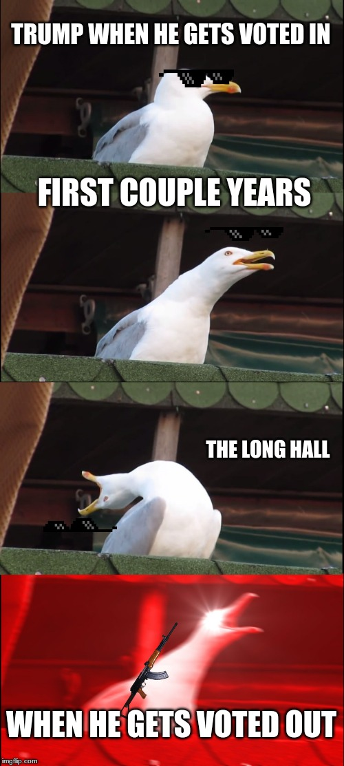 Inhaling Seagull Meme | TRUMP WHEN HE GETS VOTED IN FIRST COUPLE YEARS THE LONG HALL WHEN HE GETS VOTED OUT | image tagged in memes,inhaling seagull | made w/ Imgflip meme maker