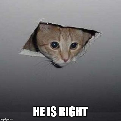 Ceiling Cat Meme | HE IS RIGHT | image tagged in memes,ceiling cat | made w/ Imgflip meme maker
