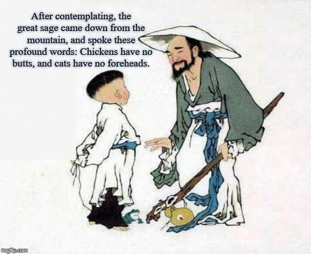 Words of Wisdom | After contemplating, the great sage came down from the mountain, and spoke these profound words: Chickens have no butts, and cats have no fo | image tagged in sage,wisdom,chinese,taoist,meditation,zen | made w/ Imgflip meme maker