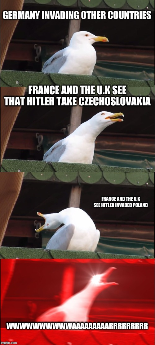 Inhaling Seagull | GERMANY INVADING OTHER COUNTRIES FRANCE AND THE U.K SEE THAT HITLER TAKE CZECHOSLOVAKIA FRANCE AND THE U.K SEE HITLER INVADED POLAND WWWWWWW | image tagged in memes,inhaling seagull | made w/ Imgflip meme maker