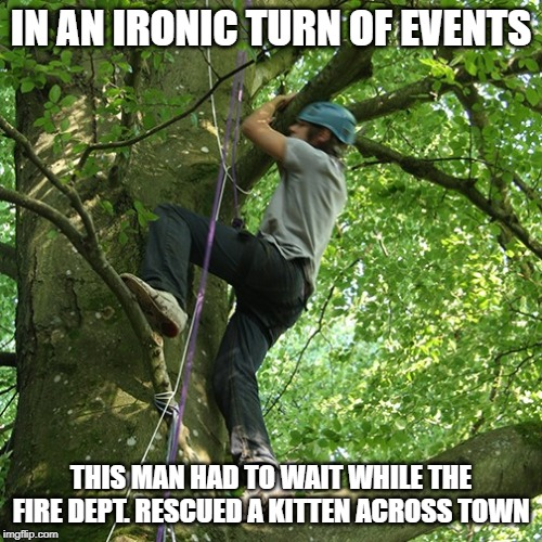 stuck | IN AN IRONIC TURN OF EVENTS THIS MAN HAD TO WAIT WHILE THE FIRE DEPT. RESCUED A KITTEN ACROSS TOWN | image tagged in tree | made w/ Imgflip meme maker