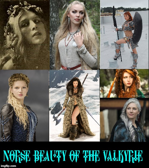 NORSE BEAUTY OF THE VALKYRIE | made w/ Imgflip meme maker