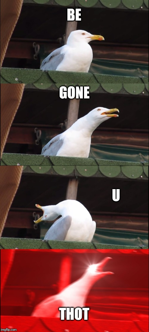 Inhaling Seagull | BE GONE U THOT | image tagged in memes,inhaling seagull | made w/ Imgflip meme maker