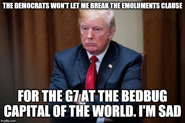 Man Baby Trump |  THE DEMOCRATS WON'T LET ME BREAK THE EMOLUMENTS CLAUSE; FOR THE G7 AT THE BEDBUG CAPITAL OF THE WORLD. I'M SAD | image tagged in man baby trump | made w/ Imgflip meme maker