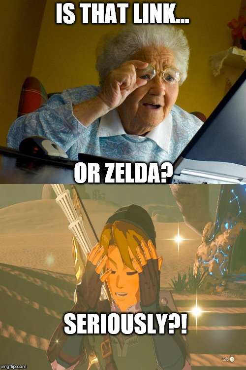 Grandma Finds The Internet |  IS THAT LINK... OR ZELDA? SERIOUSLY?! | image tagged in memes,grandma finds the internet | made w/ Imgflip meme maker
