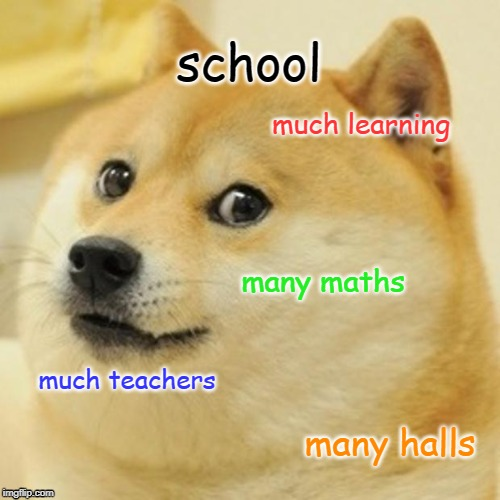Doge | school much learning many maths much teachers many halls | image tagged in memes,doge | made w/ Imgflip meme maker