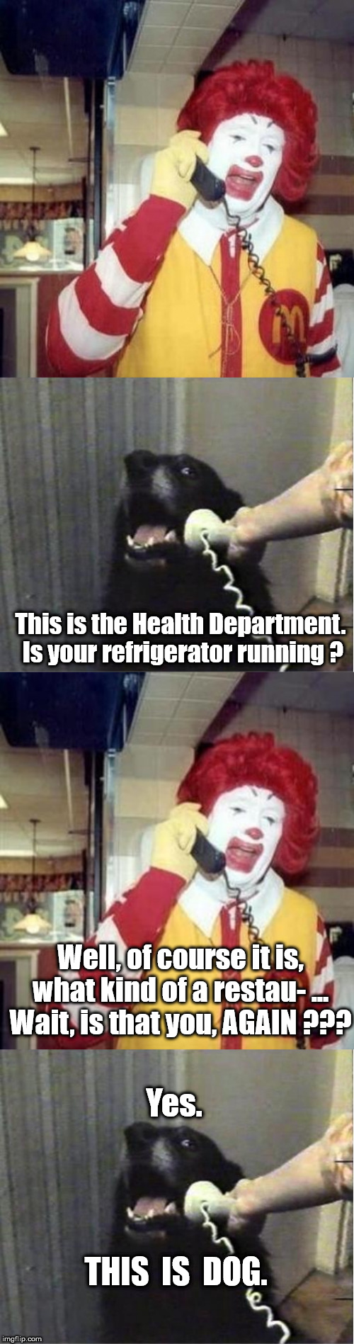This is the Health Department.  Is your refrigerator running ? Well, of course it is, what kind of a restau- ... Wait, is that you, AGAIN ?? | image tagged in yes this is dog,ronald mcdonald temp,ronald mcdonald on the phone | made w/ Imgflip meme maker