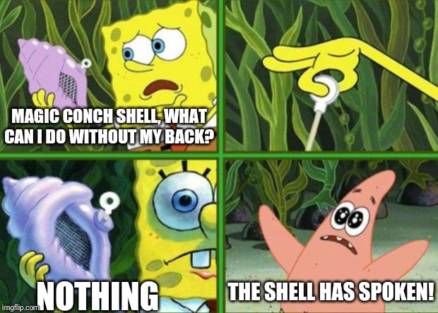 Back Safety |  MAGIC CONCH SHELL, WHAT CAN I DO WITHOUT MY BACK? NOTHING; THE SHELL HAS SPOKEN! | image tagged in magic conch,safety | made w/ Imgflip meme maker