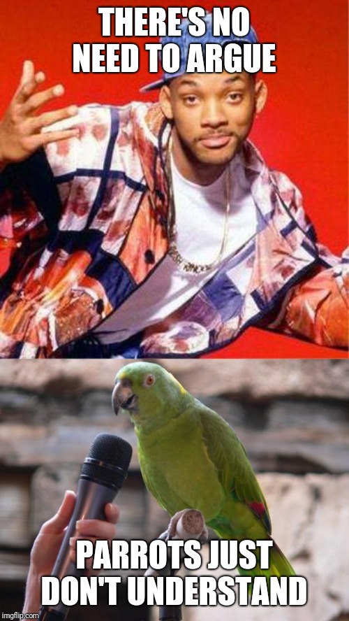 THERE'S NO NEED TO ARGUE PARROTS JUST DON'T UNDERSTAND | image tagged in will smith fresh prince,parrot,parents,rap,animals,birds | made w/ Imgflip meme maker