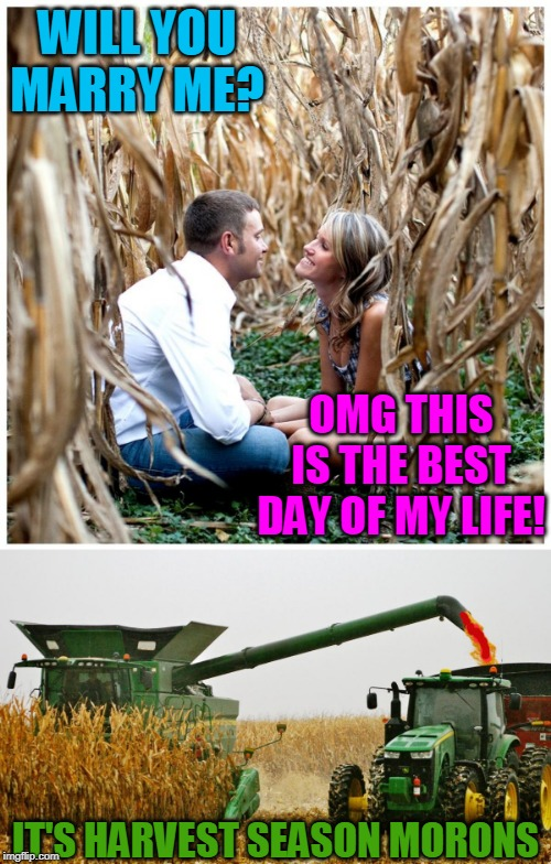 THEY DIED HAPPY | WILL YOU MARRY ME? IT'S HARVEST SEASON MORONS OMG THIS IS THE BEST DAY OF MY LIFE! | image tagged in spooktober | made w/ Imgflip meme maker