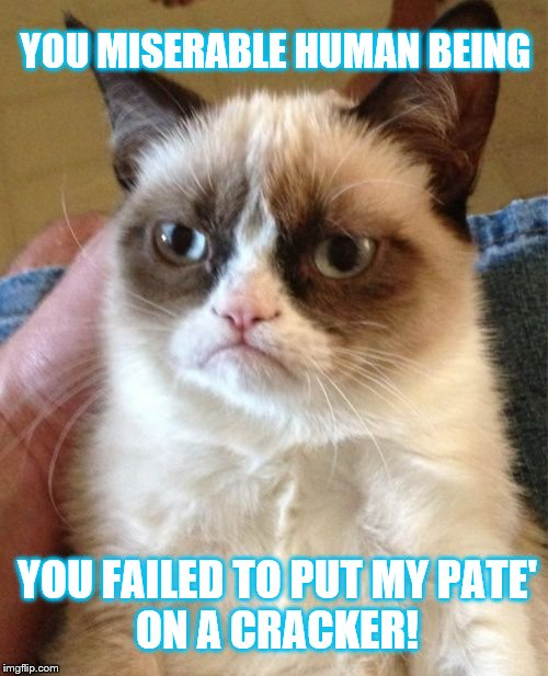 Don't be a miserable human being | YOU MISERABLE HUMAN BEING YOU FAILED TO PUT MY PATE' ON A CRACKER! | image tagged in memes,grumpy cat,funny memes,cats | made w/ Imgflip meme maker