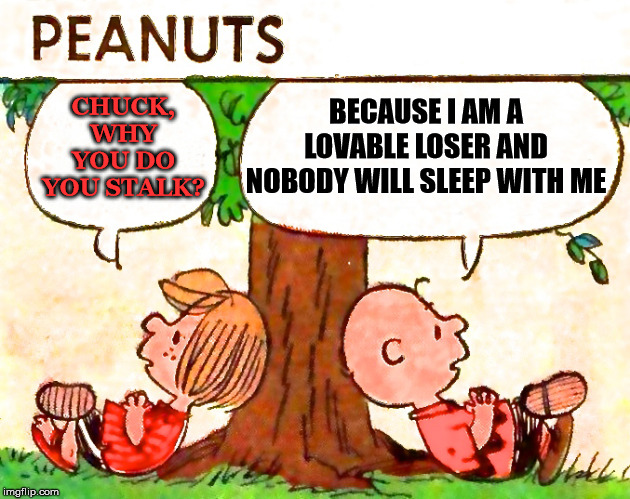 Peanuts Charlie Brown Peppermint Patty |  BECAUSE I AM A LOVABLE LOSER AND NOBODY WILL SLEEP WITH ME; CHUCK, WHY YOU DO YOU STALK? | image tagged in peanuts charlie brown peppermint patty | made w/ Imgflip meme maker