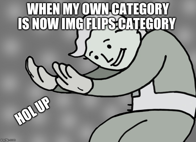 WHEN MY OWN CATEGORY IS NOW IMG FLIPS CATEGORY HOL UP | image tagged in hol up | made w/ Imgflip meme maker