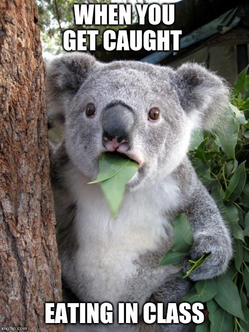 Surprised Koala |  WHEN YOU GET CAUGHT; EATING IN CLASS | image tagged in memes,surprised koala | made w/ Imgflip meme maker