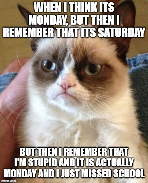 Grumpy Cat | WHEN I THINK ITS MONDAY, BUT THEN I REMEMBER THAT ITS SATURDAY BUT THEN I REMEMBER THAT I'M STUPID AND IT IS ACTUALLY MONDAY AND I JUST MISS | image tagged in memes,grumpy cat | made w/ Imgflip meme maker