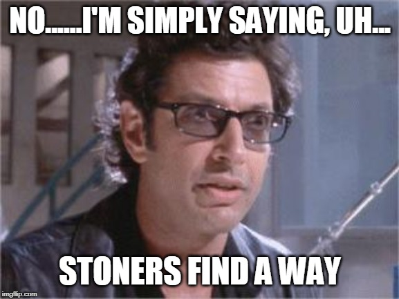 Jeff Goldblum |  NO......I'M SIMPLY SAYING, UH... STONERS FIND A WAY | image tagged in jeff goldblum | made w/ Imgflip meme maker
