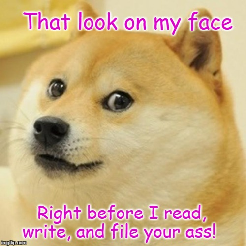 Doge | That look on my face Right before I read, write, and file your ass! | image tagged in memes,doge | made w/ Imgflip meme maker