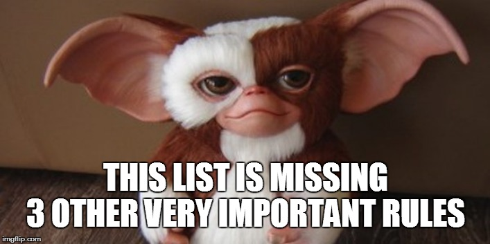 Mogwai | THIS LIST IS MISSING 3 OTHER VERY IMPORTANT RULES | image tagged in mogwai | made w/ Imgflip meme maker