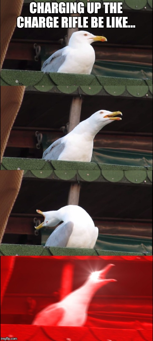 Inhaling Seagull | CHARGING UP THE CHARGE RIFLE BE LIKE... | image tagged in memes,inhaling seagull | made w/ Imgflip meme maker