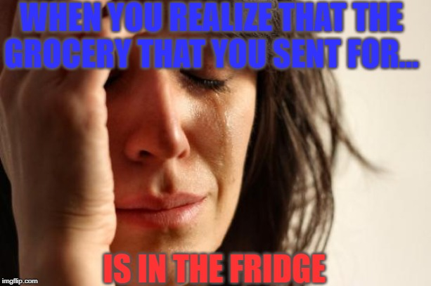 First World Problems Meme | WHEN YOU REALIZE THAT THE GROCERY THAT YOU SENT FOR... IS IN THE FRIDGE | image tagged in memes,first world problems | made w/ Imgflip meme maker