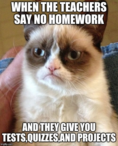 Grumpy Cat Meme | WHEN THE TEACHERS SAY NO HOMEWORK AND THEY GIVE YOU TESTS,QUIZZES,AND PROJECTS | image tagged in memes,grumpy cat | made w/ Imgflip meme maker