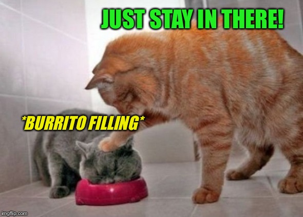 Force feed cat | JUST STAY IN THERE! *BURRITO FILLING* | image tagged in force feed cat | made w/ Imgflip meme maker