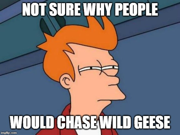 NOT SURE WHY PEOPLE WOULD CHASE WILD GEESE | image tagged in memes,futurama fry | made w/ Imgflip meme maker