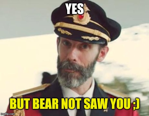 Captain Obvious | YES BUT BEAR NOT SAW YOU ;) | image tagged in captain obvious | made w/ Imgflip meme maker