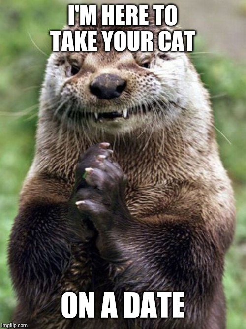 Evil Otter |  I'M HERE TO TAKE YOUR CAT; ON A DATE | image tagged in memes,evil otter | made w/ Imgflip meme maker