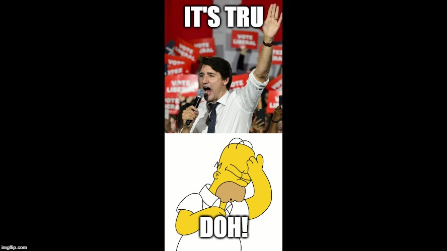 Tru Doh |  IT'S TRU; DOH! | image tagged in trudeau,justin trudeau,justin trudeau crying | made w/ Imgflip meme maker
