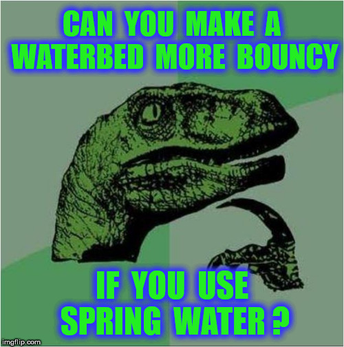 Philosoraptor | CAN  YOU  MAKE  A  WATERBED  MORE  BOUNCY IF  YOU  USE  SPRING  WATER ? | image tagged in funny,memes,waterbeds,philosoraptor | made w/ Imgflip meme maker