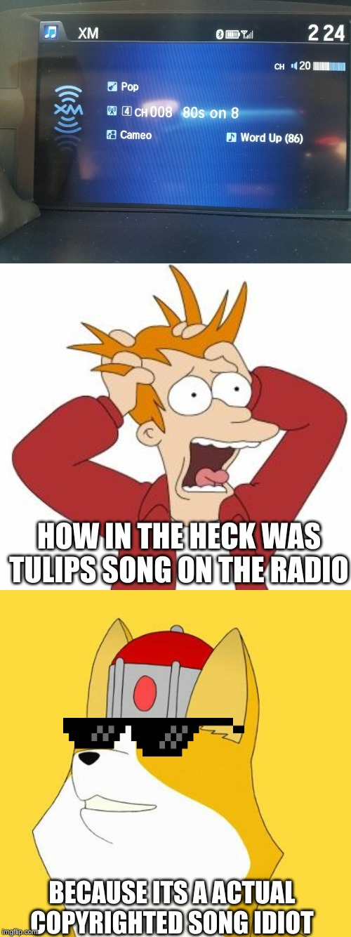 BECAUSE ITS A ACTUAL COPYRIGHTED SONG IDIOT HOW IN THE HECK WAS TULIPS SONG ON THE RADIO | image tagged in fry freaking out | made w/ Imgflip meme maker