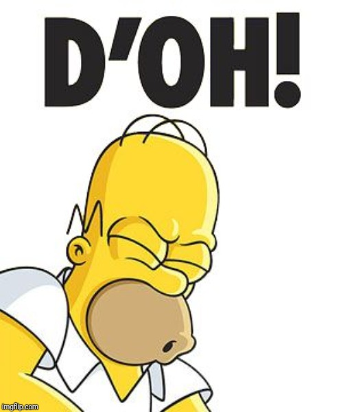 Homer D'OH! | image tagged in homer d'oh | made w/ Imgflip meme maker