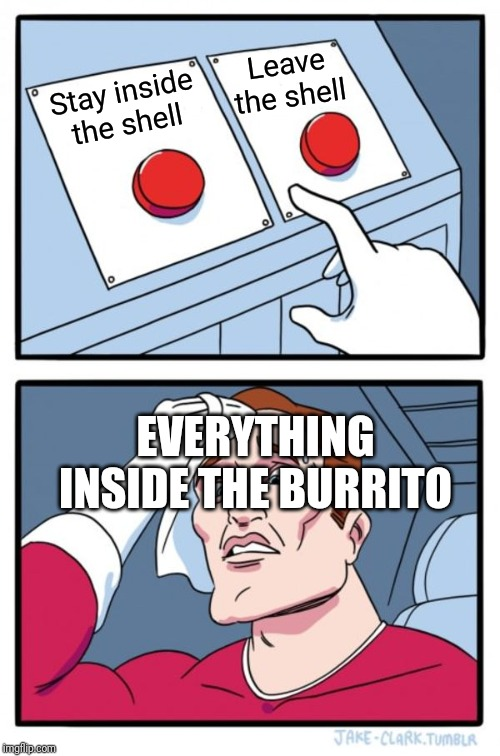 Two Buttons Meme | Stay inside the shell Leave the shell EVERYTHING INSIDE THE BURRITO | image tagged in memes,two buttons | made w/ Imgflip meme maker
