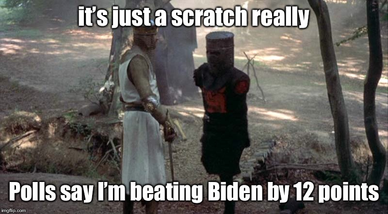 it's just a scratch really Polls say I'm beating Biden by 12 points | made w/ Imgflip meme maker