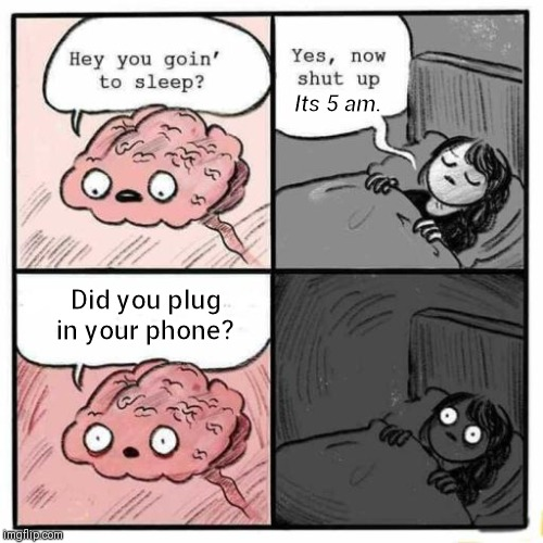 Hey you going to sleep? | Its 5 am. Did you plug in your phone? | image tagged in hey you going to sleep | made w/ Imgflip meme maker