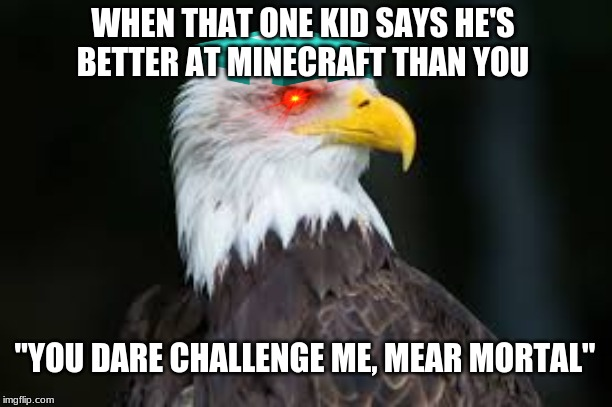 "Minecraft  Eagle | WHEN THAT ONE KID SAYS HE'S BETTER AT MINECRAFT THAN YOU ""YOU DARE CHALLENGE ME, MEAR MORTAL"" 