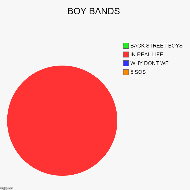 BOY BANDS | BOY BANDS | 5 SOS, WHY DONT WE, IN REAL LIFE, BACK STREET BOYS | image tagged in charts,pie charts,bands,love | made w/ Imgflip chart maker