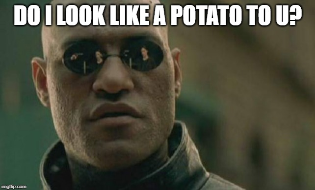 Matrix Morpheus Meme |  DO I LOOK LIKE A POTATO TO U? | image tagged in memes,matrix morpheus | made w/ Imgflip meme maker