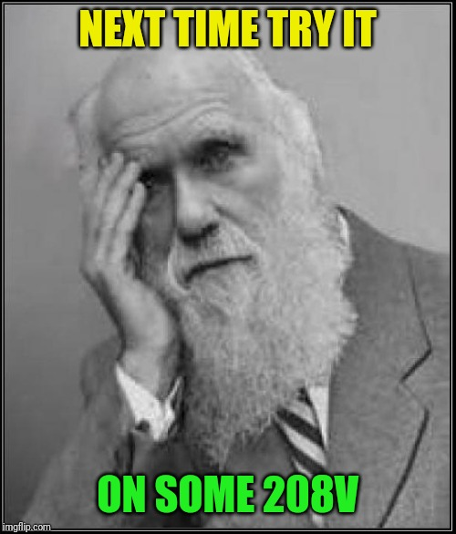 darwin facepalm | NEXT TIME TRY IT ON SOME 208V | image tagged in darwin facepalm | made w/ Imgflip meme maker