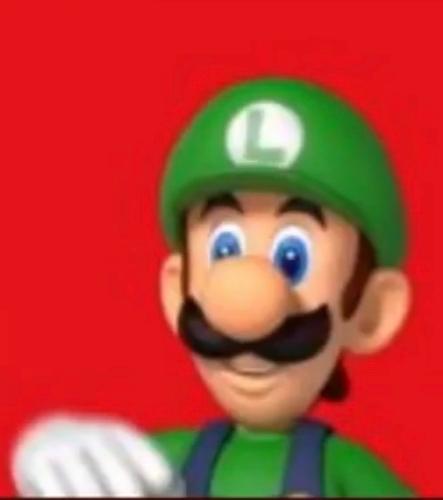 Luigi Says Wtf Blank Template Imgflip