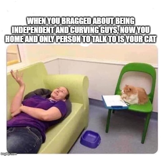 cat lady |  WHEN YOU BRAGGED ABOUT BEING INDEPENDENT AND CURVING GUYS, NOW YOU HOME AND ONLY PERSON TO TALK TO IS YOUR CAT | image tagged in cat lady | made w/ Imgflip meme maker