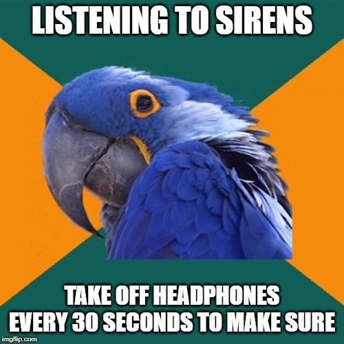 Paranoid Parrot |  LISTENING TO SIRENS; TAKE OFF HEADPHONES EVERY 30 SECONDS TO MAKE SURE | image tagged in memes,paranoid parrot | made w/ Imgflip meme maker